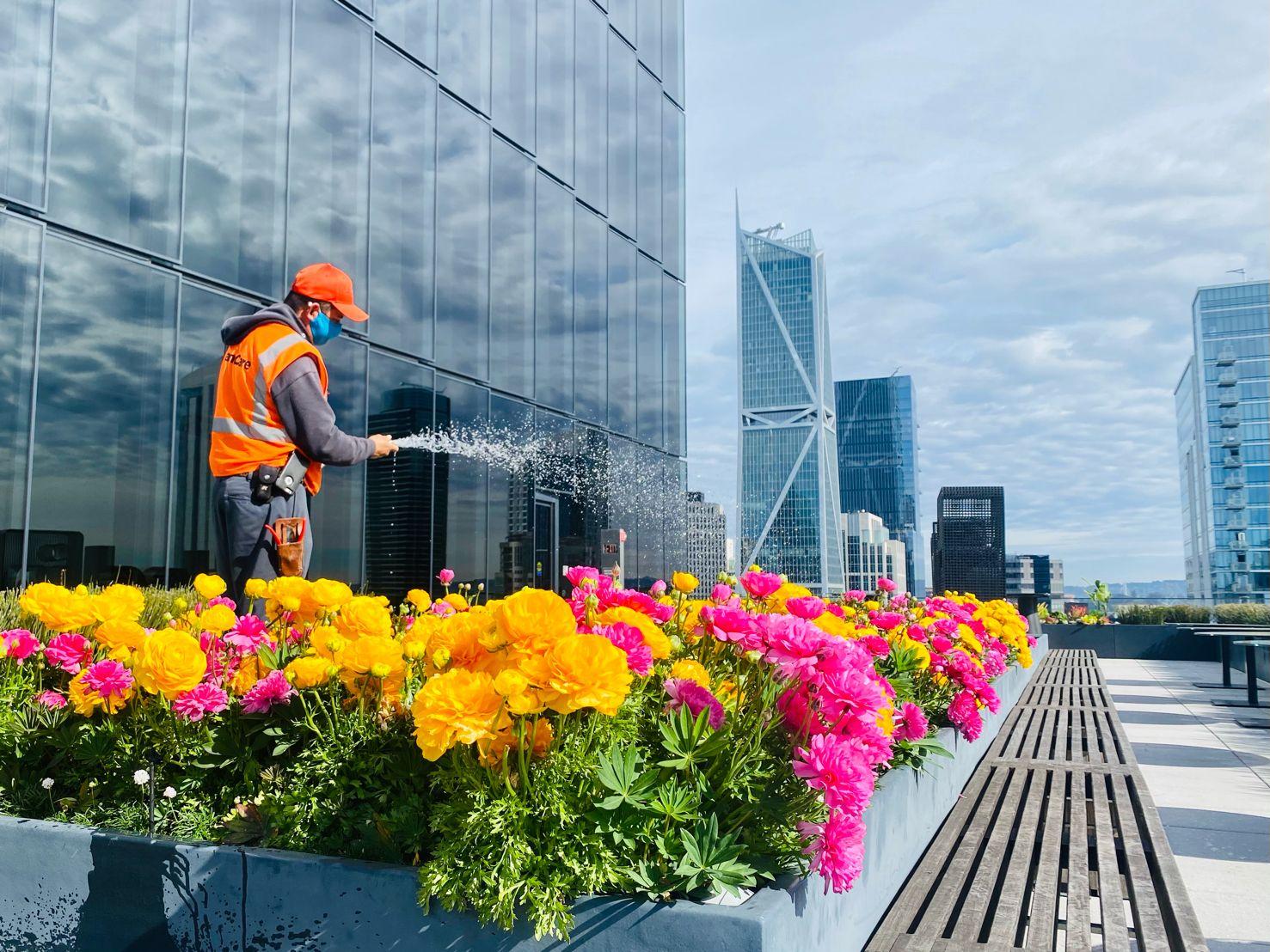 Landscape Enhancements: Preparing for Spring